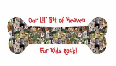 OLBH Fur Kids Rock