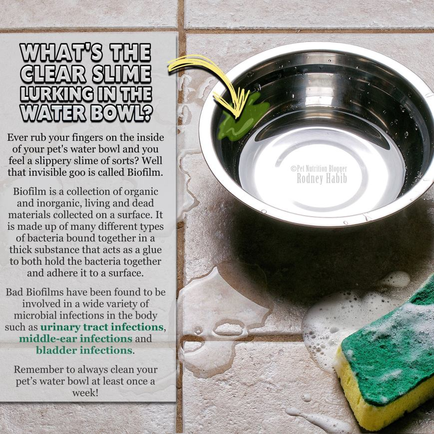 bowl cleaning reminder